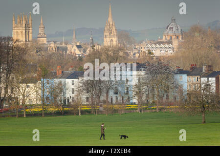 Dog walking in South Park in the early morning with the sunlit spires of Oxford behind - Stock Image