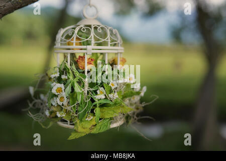 Wedding decor for gardens and outdoors setups with white vintage decorative birdcage hanging from branches of a tree and filled in with aged flowers - Stock Image