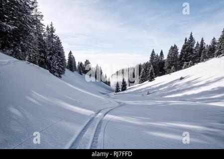 Berglandschaft im Winter am Tegelberg in Süddeutschland, Skispur - Stock Image