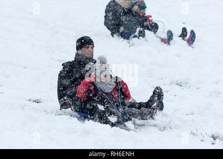Chippenham, Wiltshire, UK. 1st February, 2019. Parents and children enjoying the heavy snow are pictured as they ride a sledge in a local park in Chippenham. Credit: Lynchpics/Alamy Live News - Stock Image