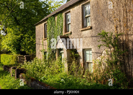 Ireland, Co Leitrim, Garvagh, overgrown abandoned cottage by side of road - Stock Image
