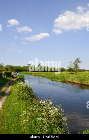 The Trent & Mersey Canal between Alrewas and Wychnor in Staffordshire where it joins the River Trent. - Stock Image