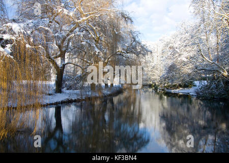 snow on the millpond at River Wey with overhanging willow tree, nr Farnham, Surrey - Stock Image