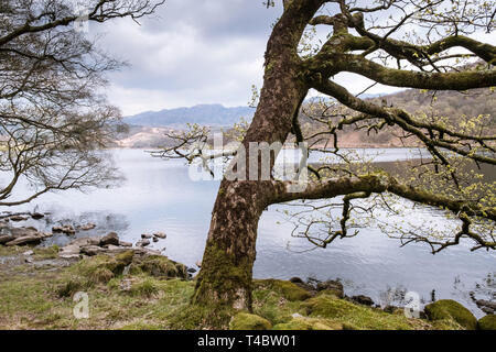 Scenic view of Llyn Dinas, a lake in Snowdonia National Park, Gwynedd, Wales, April 2019. - Stock Image