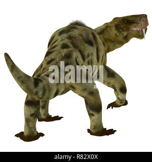 Inostrancevia Dinosaur Tail - Inostrancevia was a carnivorous cat-like dinosaur that lived in Russia during the Permian Period. - Stock Image