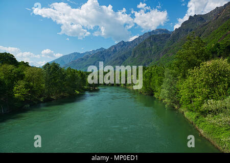 spring season on the river Toce with forest on the sides and mountains in the background and clouds in the sky - Stock Image