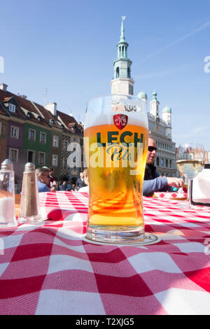 A glass of Lech pills beer on a restaurant table outside in the old market square of Poznan Poland - Stock Image