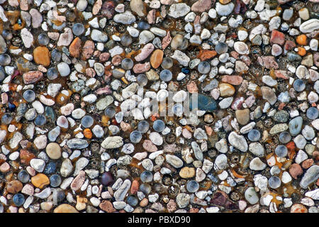 A myriad of small stones and pebbles of different shapes and colours crammed together into a concrete base to form pebble dashing. - Stock Image