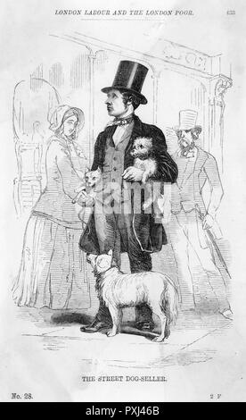 A street dog-seller       Date: 1851 - Stock Image