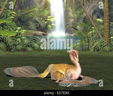 Dinosaurier Caudipteryx / dinosaur Caudipteryx - Stock Image