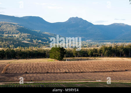 Pastoral landscape in the Huon Valley, southern Tasmania, Australia - Stock Image