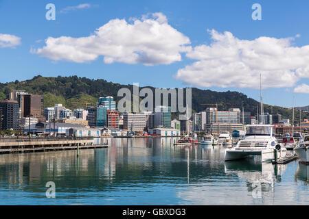 Wellington skyline across water, New Zealand - Stock Image