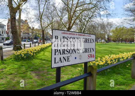 Parsons Green and Parsons Green Lane in South West London UK with daffodils in bloom - Stock Image