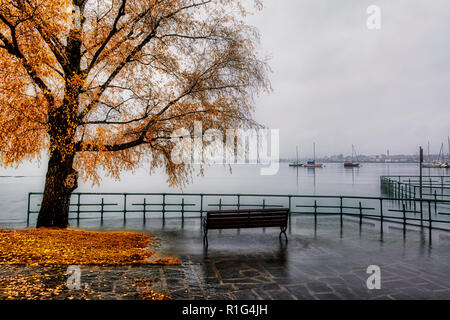 the Lake Maggiore overflows in autumn season with bench and tree in foreground and foggy skyline of Arona in background - Stock Image