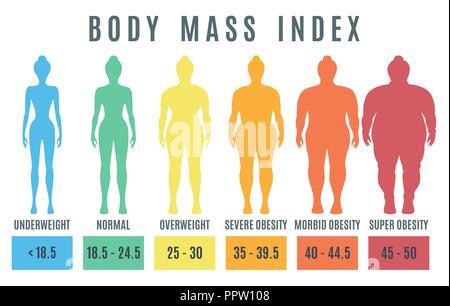 24 5 frau bmi BMI