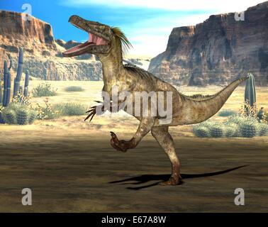 Dinosaurier Austroraptor / dinosaur Austroraptor - Stock Image