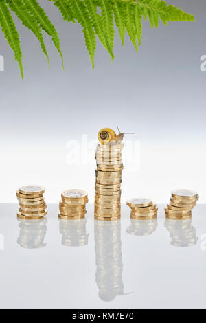Garden Snail Sitting onTop a Stack of £1 Coins - Stock Image