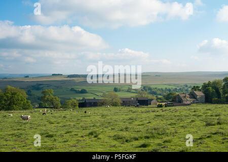 Baldersdale, Balder Valley, UK - Stock Image