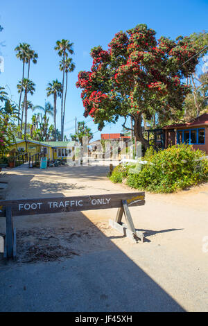 The road leading to the Crystal Cove Historic District part of Crystal Cove State Park California USA - Stock Image