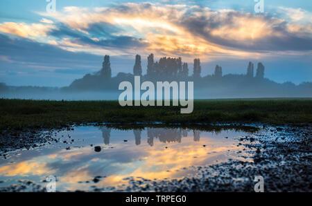 7th June 2019. Alamy. - Stock Image