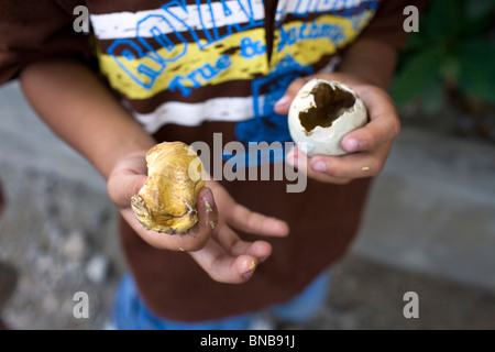 A Filipino boy displays the yolk of a balut, or cooked fertilized duck egg, while enjoying the delicacy in the Philippines. - Stock Image
