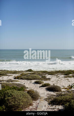 Scenic view of the beach - Stock Image