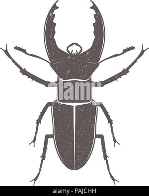 Vintage brown deer beetle emblem. Grunge badge, typogrphic symbol suitable for T-shirts or print. Isolated vector illustration - Stock Image