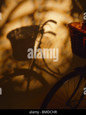 Students Cycle with Basket and Shadows - Stock Image