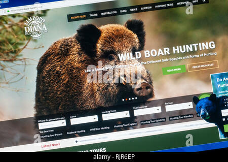 Home page of the website of Diana Hunting Tours promoting their wild boar hunting tours. - Stock Image