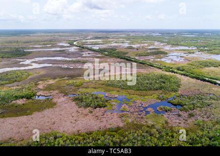 Naples Florida Tamiami Trail Route 41 Everglades Fakahatchee Strand State Preserve aerial overhead bird's eye view above - Stock Image