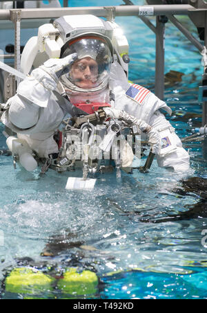 Commercial Crew Program astronaut Mike Fincke salutes, as he is lowered into the pool at the Neutral Buoyancy Laboratory for ISS EVA training in preparation for future spacewalks while onboard the International Space Station at the Johnson Space Center February 1, 2019 in Houston, Texas. - Stock Image