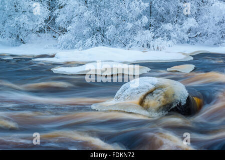 Winter river landscape with flowing water and snow in trees - Stock Image
