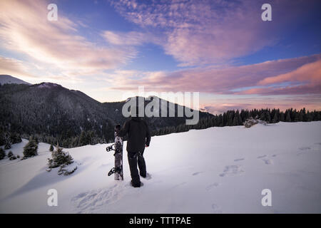 Rear view of skier walking on snowy mountain - Stock Image