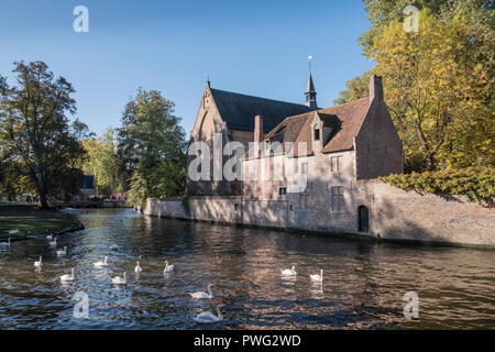 Buildings inside the Begijnhof (Beguinage) complex, home to Benedictine Nuns, Wijngaardplein, Bruges, Belgium - Stock Image