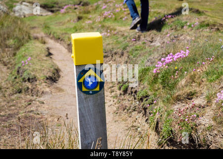 Bilingual coast footpath sign on coastal path to Borthwen from Silver Bay with a person walking. Rhoscolyn, Isle of Anglesey, Wales, UK, Britain - Stock Image