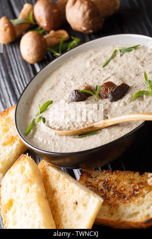 Cream soup of fresh porcini mushrooms with thyme in a bowl served with toasts on the table. vertical - Stock Image