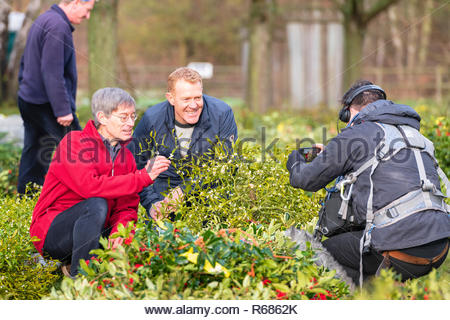 Tenbury Wells, Worcestershire, UK. 4th Dec 2018. Tenbury Mistletoe for sale by auction. Adam Henson & Countryfile were there filming. - Stock Image