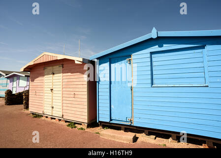 Pink and blue beach huts with nobody present in the summer scene. The doors and windows are sealed shut. - Stock Image