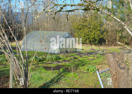 Unused greenhouse on a large rural property in British Columbia, Canada. Shot in the winter, so no production of flowers or vegetables. - Stock Image