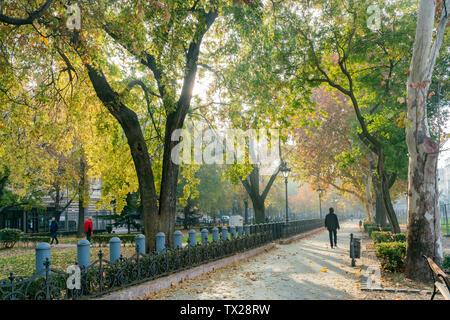 Beautiful autumn landscape around Liberty Square at Budapest, Hungary - Stock Image