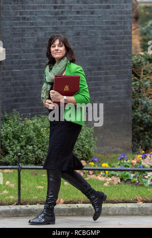 London, United Kingdom. 15 January 2019. Claire Perry, Minister of State for Energy and Clean Growth arrives at 10 Downing Street for the weekly cabinet meeting ahead of the critical Brexit vote. Credit: Peter Manning/Alamy Live News - Stock Image