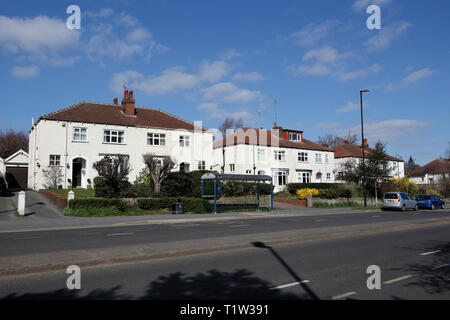 Properties on Abbeydale Road South, Millhouses, Sheffield, England, UK - Stock Image