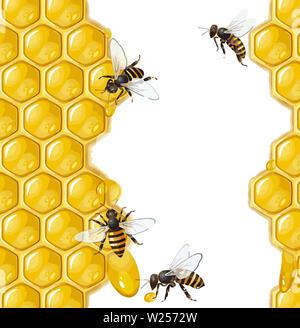 beehive honeycomb bee food yellow   honey  natural illustration - Stock Image
