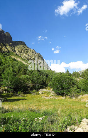 Panorama to Aigüestortes National Park in the Catalan Pyrenees, Spain - Stock Image
