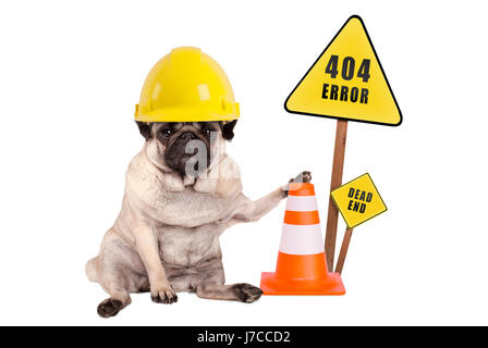pug dog with yellow constructor safety helmet and cone and 404 error and dead end sign on wooden pole, isolated - Stock Image