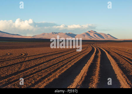 Tyre tracks run off into the distance across the Bolivian altiplano - Stock Image