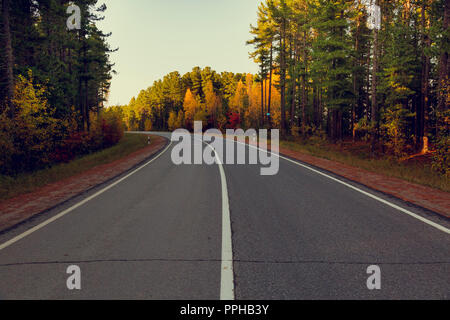 Mixed coniferous and deciduous autumn forest grows along an asphalt road with a dividing strip - Stock Image