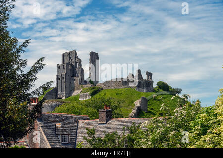 The ruins of Corfe Castle - Stock Image