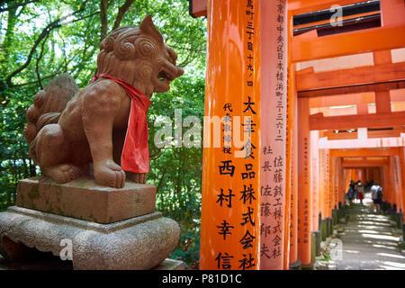 Komainu lion-dog with Senbon Torii red gates in Fushimi Inari Shrine in Kyoto, Japan. The mythological creature is believed to ward off evil spirits. - Stock Image