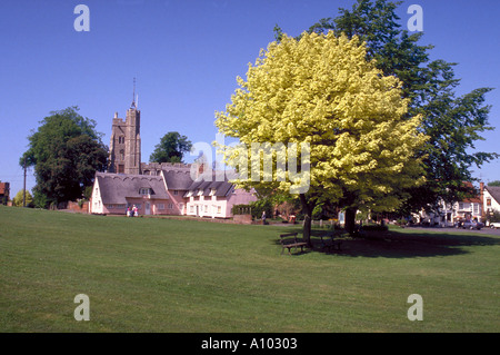 The village of Cavendish Suffolk England - Stock Image